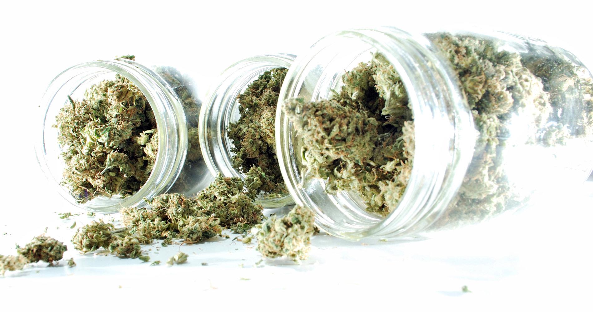 medical-marijuana-portland