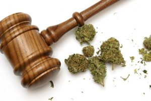 Legal Marijuana Resources