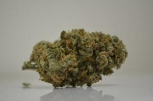 Cannabis Portland